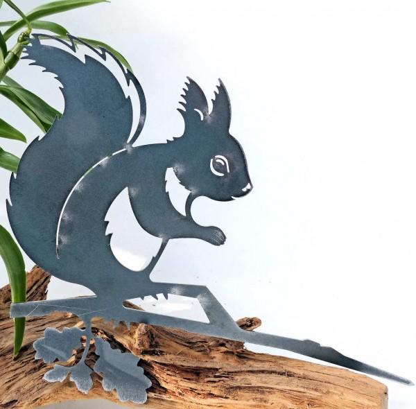 Eichhörnchen, Glückstier